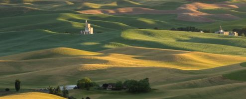 Behind the shot: The Palouse