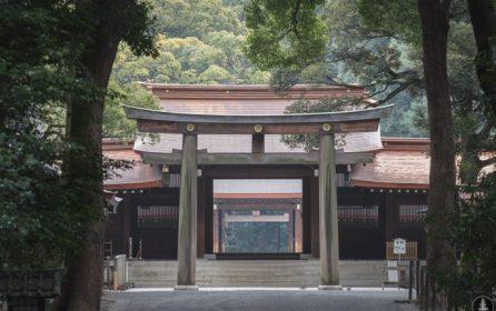 Japow (Japan + Powder) Trip Recap