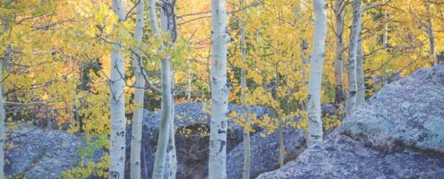 Fall in Rocky Mountain National Park – 2020