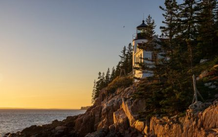 Fall in Acadia National Park – 2020